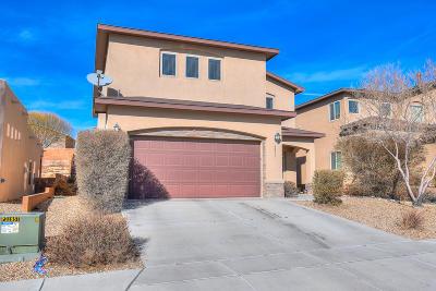 Albuquerque Single Family Home For Sale: 6235 Nueva Espana Road NW