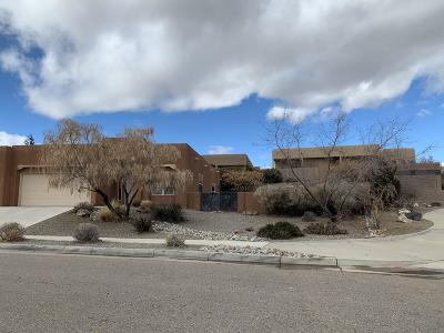 Albuquerque Single Family Home For Sale: 8801 Sandwater Road NW
