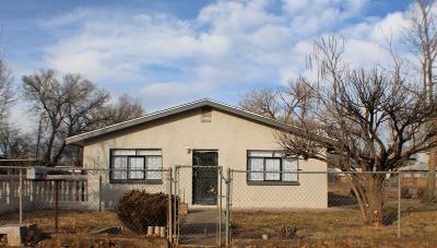 Albuquerque Single Family Home For Sale: 1001 Bonito Road SW
