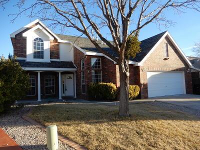 Albuquerque Single Family Home For Sale: 9316 Joe Montoya Place NW