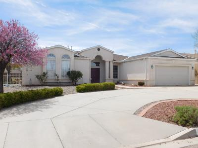 Rio Rancho Single Family Home For Sale: 3236 Cascades Trail SE