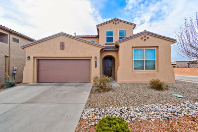 Albuquerque Single Family Home For Sale: 8516 Chilte Pine Road NW