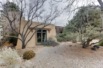 Albuquerque Single Family Home For Sale: 1009 Matador Drive SE