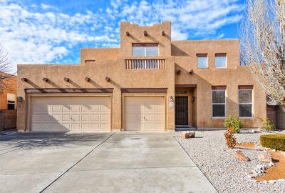 Albuquerque Single Family Home For Sale: 6627 Santo Lina Trail NW