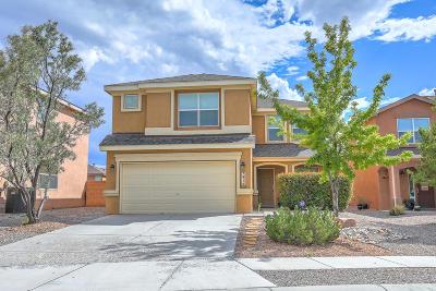 Albuquerque Single Family Home For Sale: 7916 Dragoon Road NW