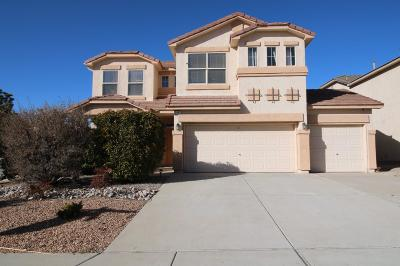 Albuquerque, Rio Rancho Single Family Home For Sale: 2401 Anitori Drive SE