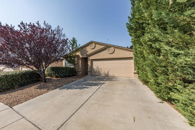 Albuquerque Single Family Home For Sale: 8211 Wolverine Drive NW