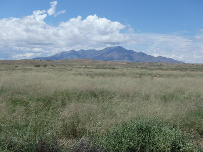 Sierra County Farm & Ranch For Sale: Rio Puerco Ranch
