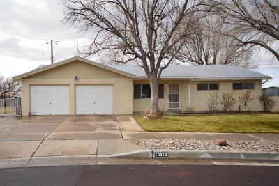 Bernalillo County Single Family Home For Sale: 10312 McKnight Avenue NE