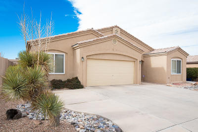 Albuquerque Single Family Home For Sale: 10923 Pasquale Drive NW