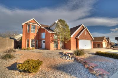Albuquerque Single Family Home For Sale: 8728 Springhill Drive NW