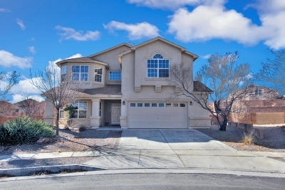 Albuquerque Single Family Home For Sale: 9912 Sun Chaser Trail SW