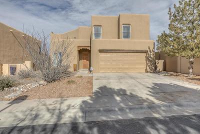 Albuquerque Single Family Home For Sale: 9247 Apache Pine Way NE