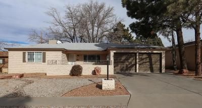 Albuquerque Single Family Home For Sale: 9513 Dona Marguerita Avenue NE