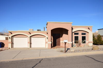 Albuquerque NM Single Family Home For Sale: $349,900