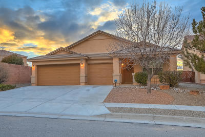 Albuquerque Single Family Home For Sale: 10527 Coyote Canyon Place NW