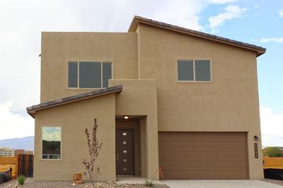 Albuquerque, Rio Rancho Single Family Home For Sale: 2448 Nugget Street SE