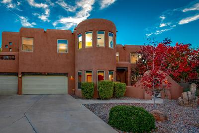 Albuquerque Single Family Home For Sale: 2315 Via Seville Court
