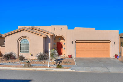 rio rancho Single Family Home For Sale: 2521 Vista Manzano Loop NE
