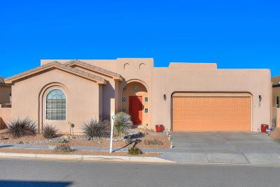 Rio Rancho Single Family Home For Sale: 2521 Vista Manzano Loop NE