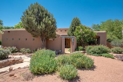Albuquerque Single Family Home For Sale: 1642 Tierra Del Rio NW