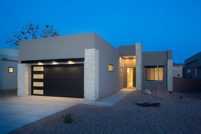Albuquerque Single Family Home For Sale: 2724 Puerta Del Bosque Lane NW