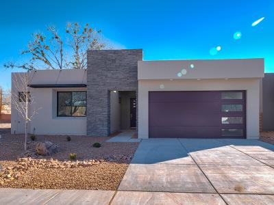 Albuquerque Single Family Home For Sale: 2720 Puerta Del Bosque Road NW