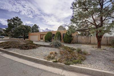 Albuquerque Single Family Home For Sale: 1029 Santa Ana Avenue SE