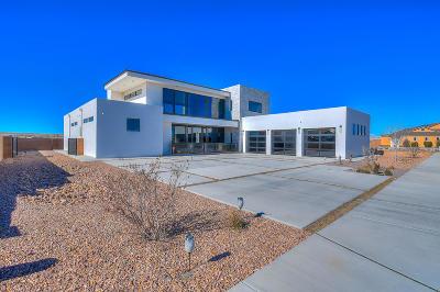 Albuquerque Single Family Home For Sale: 6543 Pato Road NW