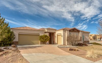 Rio Rancho Single Family Home For Sale: 1601 Western Hills Drive SE