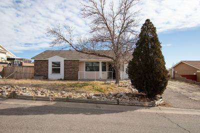 Rio Rancho Single Family Home For Sale: 582 Apache Loop SW