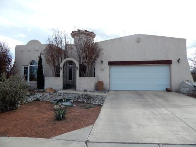 Valencia County Single Family Home For Sale: 423 Dennis Drive NE
