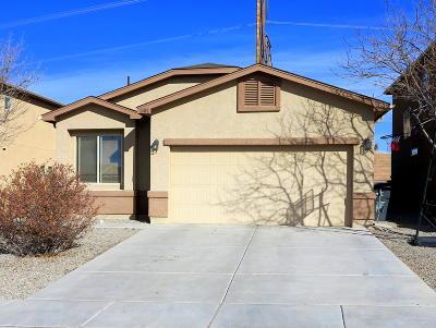 Rio Rancho Single Family Home For Sale: 1408 Desert Paintbrush Loop NE