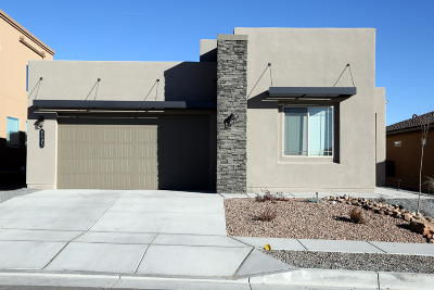 Albuquerque Single Family Home For Sale: 8505 Downburst Avenue