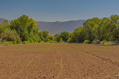 Bernalillo County Residential Lots & Land For Sale: 10119 Guadalupe Trail NW