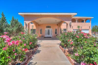 Bernalillo County Single Family Home For Sale: 3940 San Ygnacio Road SW