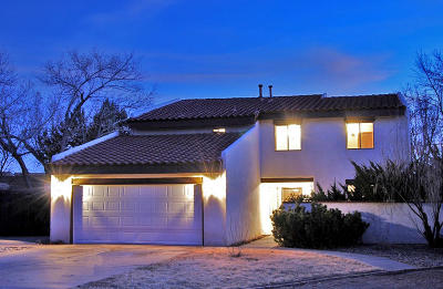 Albuquerque Single Family Home For Sale: 1714 Camino Gallo NW