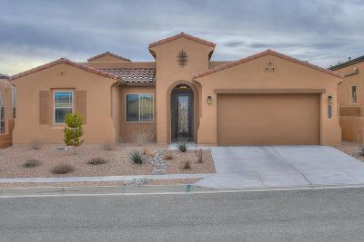 Rio Rancho Single Family Home For Sale: 2520 Vista Manzano Loop NE