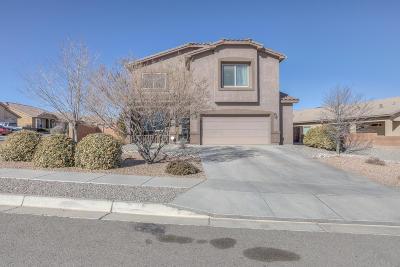 Albuquerque, Rio Rancho Single Family Home For Sale: 7104 Skagway Drive NE