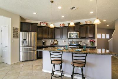 Rio Rancho Single Family Home For Sale: 162 Prado Verde Court NE