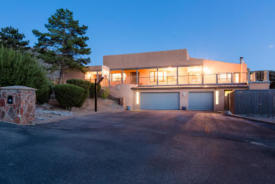 Sandia Heights Single Family Home For Sale: 211 Spring Creek Drive NE