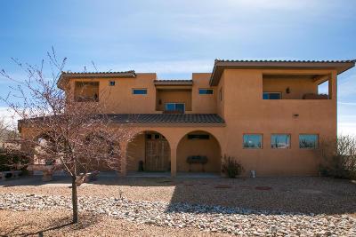 Albuquerque Single Family Home For Sale: 10000 Florence Avenue NE