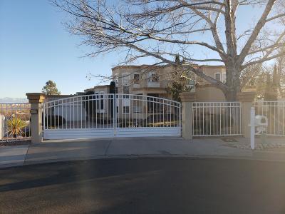 Albuquerque Single Family Home For Sale: 5304 Canada Vista Place NW