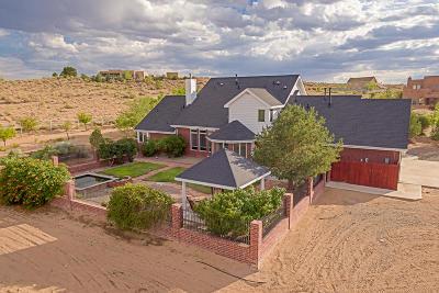 Rio Rancho Single Family Home For Sale: 1720 Leon Court NE