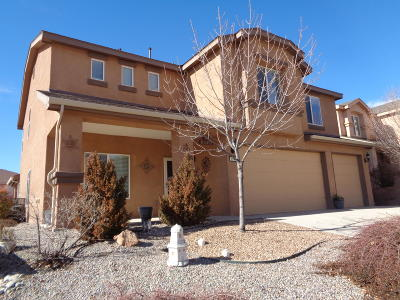 Los Lunas Single Family Home For Sale: 1141 Festival Road NW