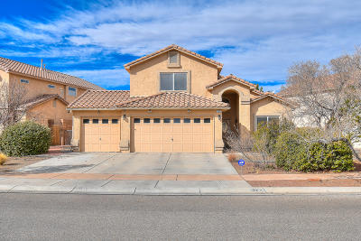 Bernalillo County Single Family Home For Sale: 7372 Sidewinder Drive NE