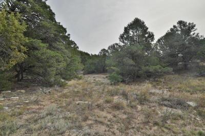 Tijeras Residential Lots & Land For Sale: 46 Monte Verde Road