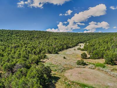 Tijeras Residential Lots & Land For Sale: 24 Anne Pickard Loop