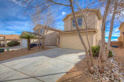 Albuquerque Single Family Home For Sale: 9120 Lower Meadow Trail SW