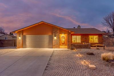 Single Family Home For Sale: 9513 Academy Hills Drive NE